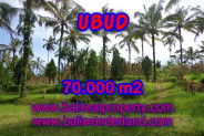 Land for sale in Bali, Outstanding view in Ubud Bali – 70.000 m2 @ $ 95