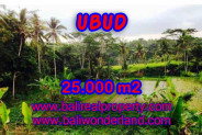 Exceptional Property in Bali, Land in Ubud Bali for sale – 25.000 m2 @ $ 500