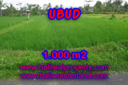 Amazing Property in Bali, Land for sale in Ubud Bali – 1.000 m2 @ $ 120