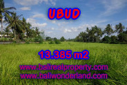 Land in Bali for sale, Great view in Ubud Bali – 13.385 m2 @ $ 295