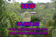 Land for sale in Bali, Magnificent view in Ubud Bali – 35.000 m2 @ $ 185