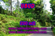 Land in Bali for sale, Great view in Ubud Bali – 200 m2 @ $ 165