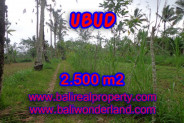 Splendid Property for sale in Bali, land for sale in Ubud Bali  – 2.500 m2 @ $ 65