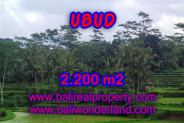 Astonishing Property in Bali, Land for sale in Ubud Bali – 2.200 m2 @ $ 98
