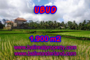 Magnificent Property in Bali, Land for sale in Ubud Bali – 1.900 m2 @ $ 315