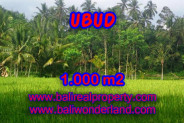 Exceptional Property in Bali, Land in Ubud Bali for sale – 1.000 m2 @ $ 175