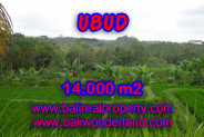 Exotic Property for sale in Bali, Land in Ubud for sale – 14.000 m2 @ $ 47