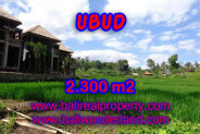 Land for sale in Bali, Outstanding view in Ubud Bali – 2.300 m2 @ $ 427