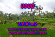 Extraordinary Property in Bali, Land for sale in Ubud Bali – 3.600 m2 @ $ 55