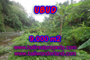 Land in Bali for sale, Stunning Property in Ubud Bali – 9.000 m2 @ $ 235