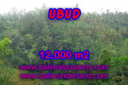 Land in Bali for sale, Stunning Property in Ubud Bali – 12.000 m2 @ $ 97