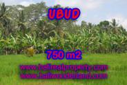Exotic Property in Bali, Land sale in Ubud Bali – 750 m2 @ $ 215