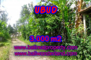 Land for sale in Bali, Exceptional view in Ubud Bali – 3.000 m2 @ $ 72