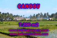 Land for sale in Bali, Amazing view in Canggu Bali – 7,200 sqm @ $ 639