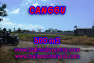 Magnificent Property in Bali, land in Canggu Bali for sale – 500 sqm @ $ 850