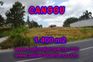 Splendid Property for sale in Bali, Canggu land for sale – 1,400 sqm @ $ 983