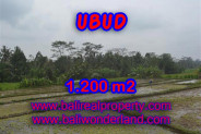 Land for sale in Bali, Magnificent view in Ubud Bali – 1.200 m2 @ $ 235