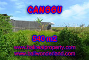 Property in Bali for sale, Beautiful LAND FOR SALE IN CANGGU Bali  – 540 m2 @ $ 435