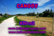 Extraordinary Property in Bali, Land in Canggu for sale – 930 m2 @ $ 885