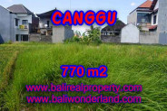 Fantastic Property in Bali, LAND FOR SALE IN CANGGU Bali – 770 m2 @ $ 550