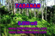 Amazing Property in Bali, LAND FOR SALE IN TABANAN Bali – 3.200 m2 @ $ 45