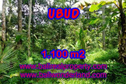 Bali Property for sale, Nice View land for sale in Ubud Bali  – 1.100 m2 @ $ 145