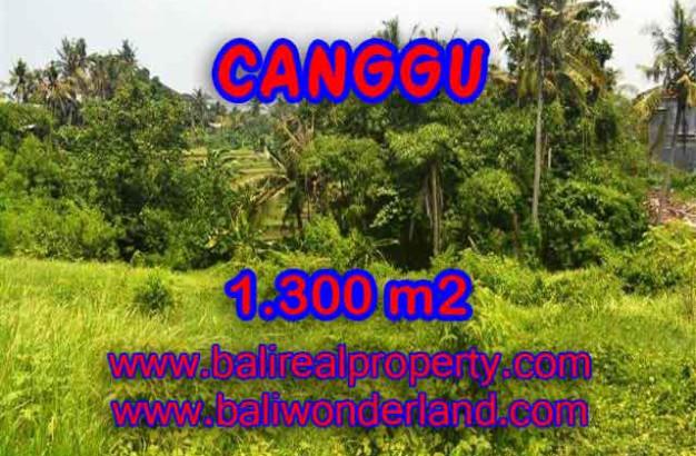 Land for sale in Bali, exotic view in Canggu Batu bolong Bali – TJCG136
