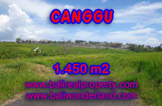 Land in Bali for sale, extraordinary view in Canggu Cemagi – TJCG137