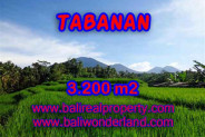 Bali Property for sale, Nice View land for sale in Tabanan Bali  – 3.200 m2 @ $ 35