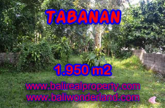 Property sale in Bali, Beautiful land in Tabanan for sale – TJTB130