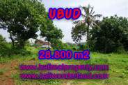 Land for sale in Bali, Outstanding view in Ubud Bali – 28.800 m2 @ $ 175