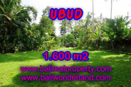 Exotic Property for sale in Bali, Land in Ubud for sale– 1.600 m2 @ $ 385