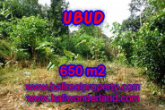 Extraordinary Property in Bali, Land in Ubud for sale – 650 m2 @ $ 395