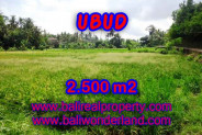 Exotic Property in Bali, Land sale in Ubud Bali – 2.500 m2 @ $ 285