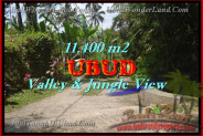 Unbelievable Property for sale in Bali, land for sale in Ubud Bali  – 11.400 m2 @ $ 75
