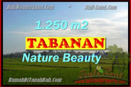 Bali Property for sale, Nice View land for sale in Tabanan Bali  – 1.250 m2 @ $ 335