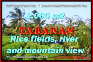 Extraordinary Property for sale in Bali, land for sale in Tabanan Bali  – 2.000 m2 @ $ 225