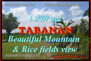 Terrific Property for sale in Bali, LAND FOR SALE IN TABANAN Bali  – 1.430 m2 @ $ 195