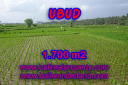 Land for sale in Bali, Exceptional view in Ubud Bali – 1.700 m2 @ $ 150