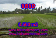 Land for sale in Bali, Magnificent view in Ubud Bali – 3.500 m2 @ $ 220