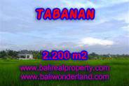 Extraordinary Property in Bali, Land in Tabanan for sale – 2.200 m2 @ $ 265