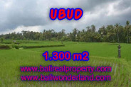 Land for sale in Bali, Interesting view in Ubud Bali – 1.300 m2 @ $ 300