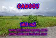 Land in Bali for sale, fantastic view in Canggu Bali – TJCG138