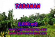 Fantastic Property in Bali, LAND FOR SALE IN TABANAN Bali – 2.000 m2 @ $ 120