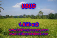 Amazing Property in Bali, LAND FOR SALE IN UBUD Bali – 1.850 m2 @ $ 175
