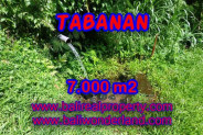 Beautiful Property for sale in Bali, land for sale in Tabanan Bali  – 7.000 m2 @ $ 27