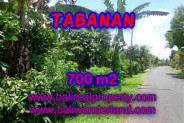 Astonishing Property in Bali, Land for sale in Tabanan Bali – 700 m2 @ $ 70