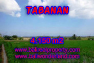 Spectacular Property for sale in Bali, land for sale in Tabanan Bali – TJTB137