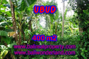 Land in Bali for sale, great view in Ubud Bali – TJUB371
