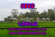 Land for sale in Bali, spectacular view in Ubud Bali – TJUB365